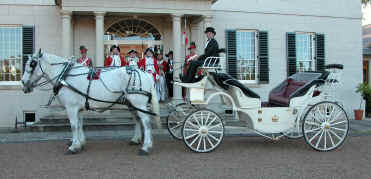open wedding horse and carriage for hire