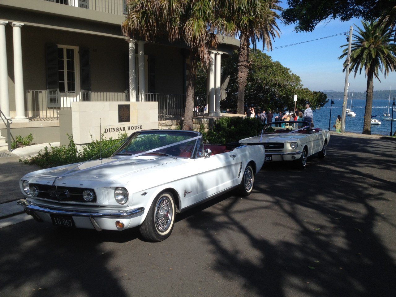 mustang wedding cars sydney