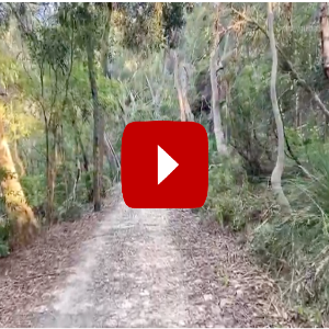 accessible hike sydney